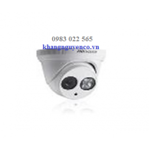 Camera IP DS-2CD1301-I